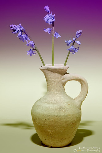 Earthenware Spring | by Osgoldcross Photography