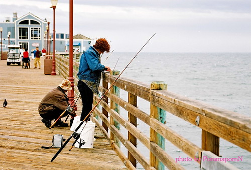 California pier fishing at san diego beach carlsbad for Pier fishing san diego