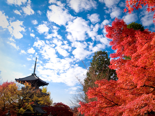 red invasion (Sinnyo-dou temple, Kyoto) | by Marser