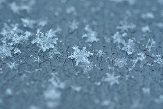 Snowflakes | by Juliancolton2