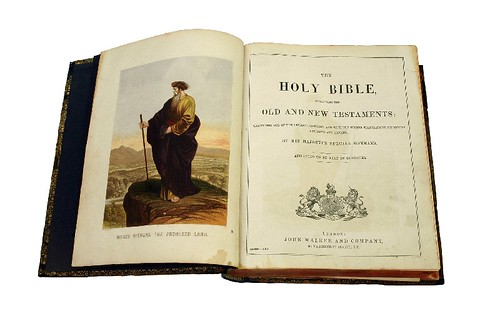 Bible (1880) HT 2004.157 (S) | by migrationmuseum