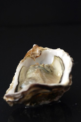 Oyster open | by photo-copy
