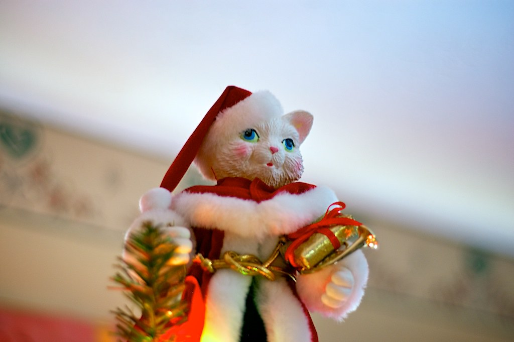 Cat Christmas tree topper | ...with the 50mm lens, but limit… | Flickr