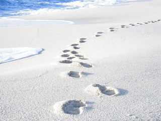 Walking on the white rice-sand beach | by eleinads [ə]
