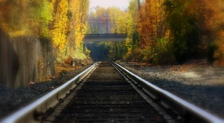 train tracks 11.14.10 | by Megh.England