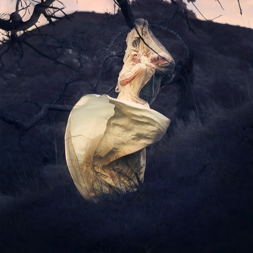 the hunted | by brookeshaden