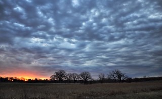 Sunrise At Nippersink Forest Preserve | by Seth Oliver Photographic Art