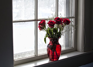 roses in a window | by Muffet