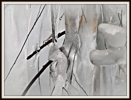 Ice, Ice, Baby...... | by Reib's Pics