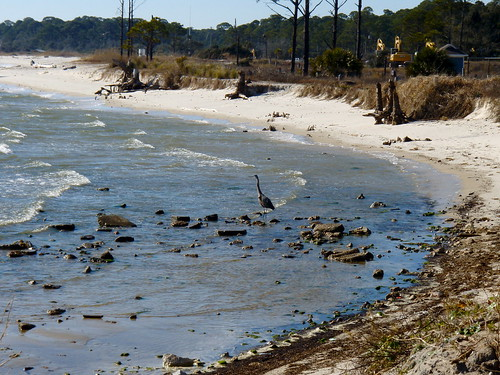 Dauphin Island | by Janet is really Cool!