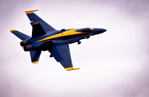 A Blue Angel | by wesleycarr