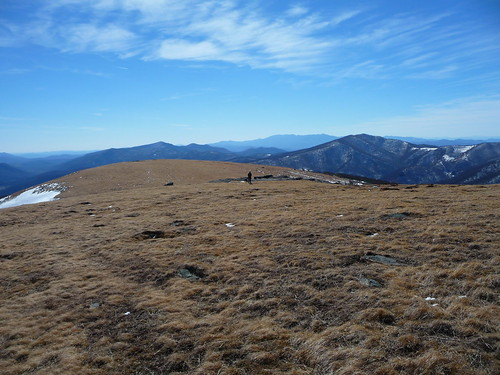 Andy and Boone on Yellow Mountain's Summit | by nc_hiker