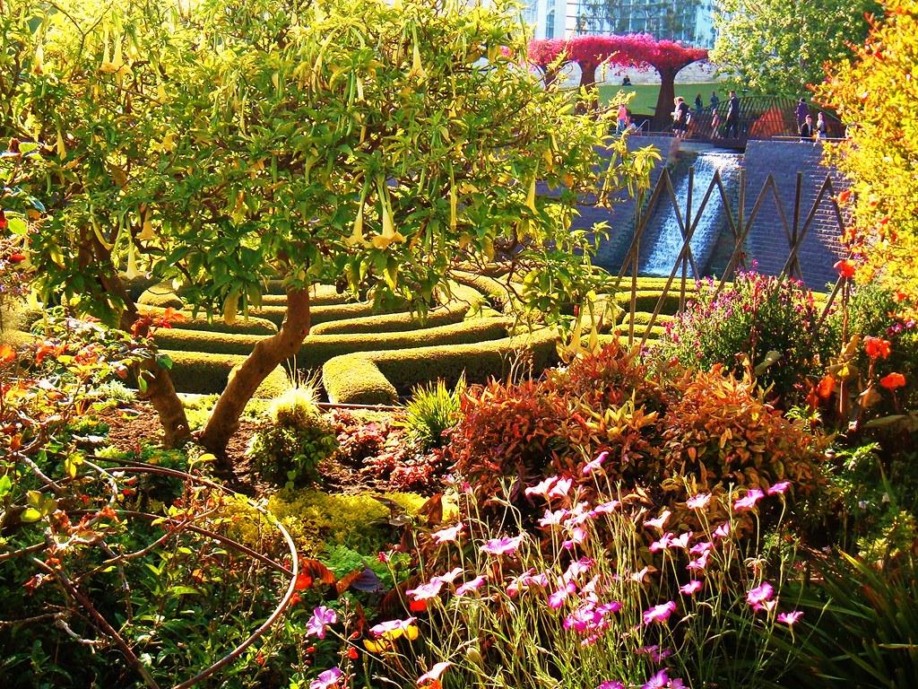 alice in wonderland garden wonderful alice in wonderland garden decor welcome to wonderland. Black Bedroom Furniture Sets. Home Design Ideas