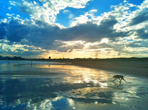 Sunset on the Australian beach of Cronulla #iPhoneography | by Michael.Sutton