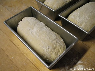 How to shape bread dough into sandwich loaves 5 | by Farmgirl Susan