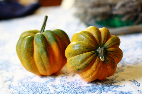 Acorn Squash Soup | by districtofchic