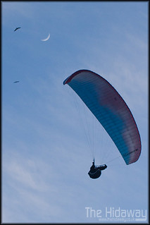 Paraglider | by Simon Bone Photography