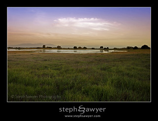 Santa Rosa Plateau Vernal Pool | by Steph Sawyer Photography (on and off)