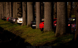 Supercar Forest | by Thomas van Rooij