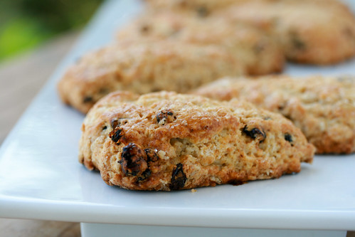 Oatmeal Nutmeg Scones - Tuesdays with Dorie | by Food Librarian