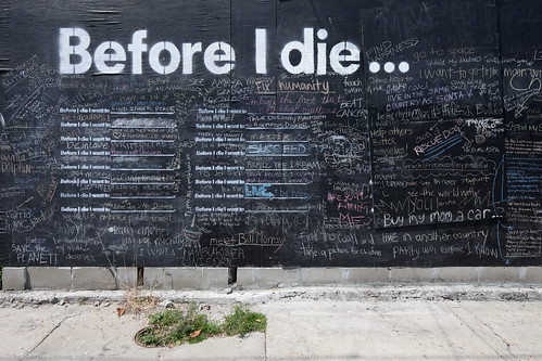 Before I die I want to... | by metroblossom