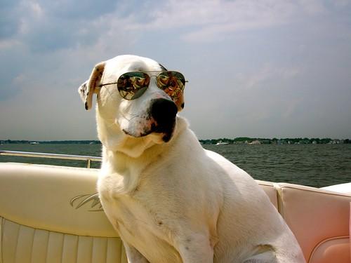 June Boat