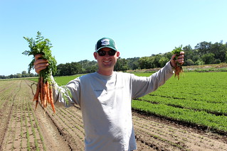 Carrots! | by Farm Fresh To You -