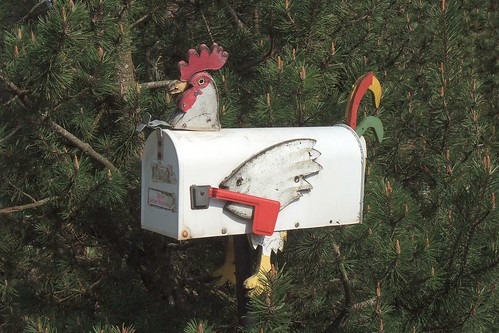 Animal Mailbox | by Kecko