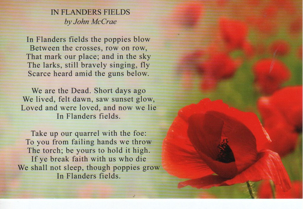 In flanders fields poppy poem standard sized card sam p flickr in flanders fields poppy poem by aronde99 aaron and sam mightylinksfo