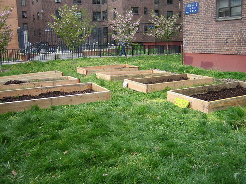 Ingersoll Garden - Build Day - 4.29 (50) | by myrtle_avenue_brooklyn