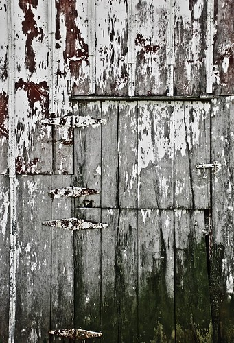 old barn door | by laughlinc