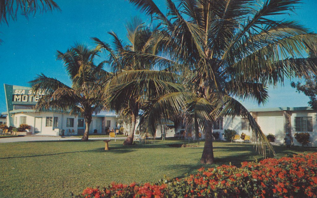 Sea Shell Motel - Naples, Florida