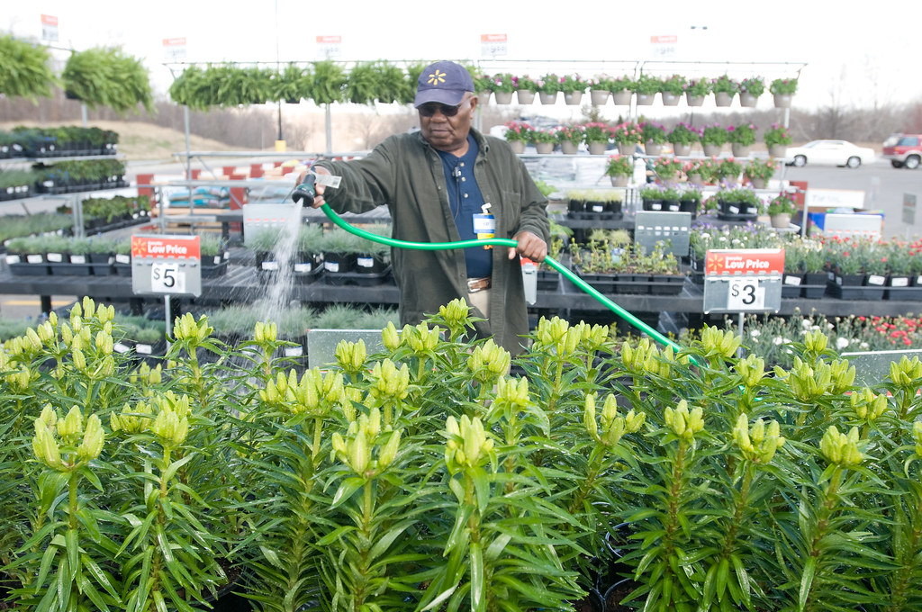 ... Walmart Associate Waters Plants In The Garden Center | By Walmart  Corporate Design