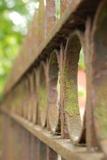 Rusty gate fade | by Beeches Photography