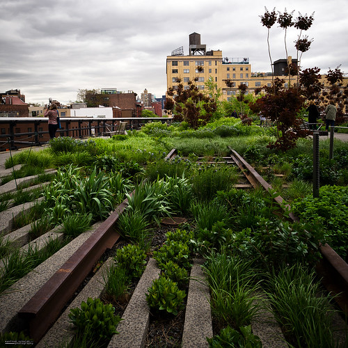 # the High Line | by Manfred Schmidt
