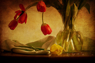 Still life with tulips and sprinkles | by shutterbugdeb