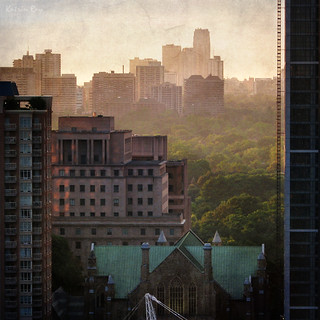 Toronto's Mixed Forest. Sunset in Renaissance Colours | by Katrin Ray