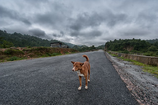 guardian at mawlynbegna (1 of 1) | by iamsomnath