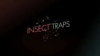 Insect Traps | by mrkism