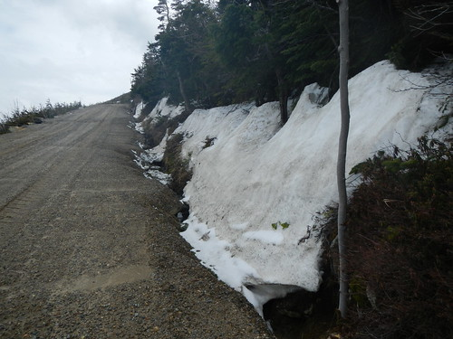 Some snow along the 5 mile 4/25 | by Mt.Washington Auto Road