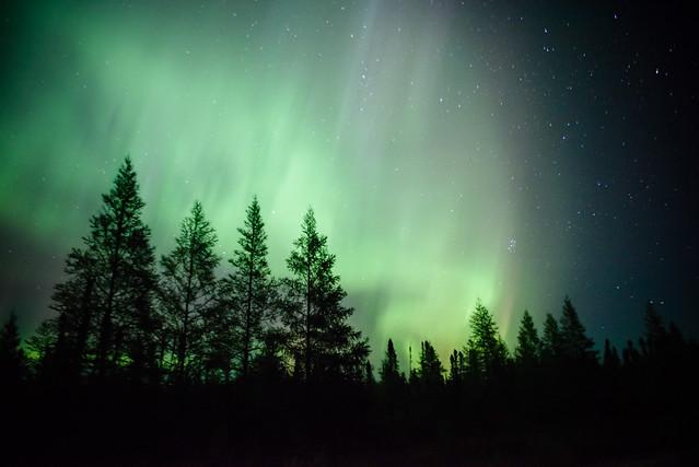 Northern Lights DSC_3422