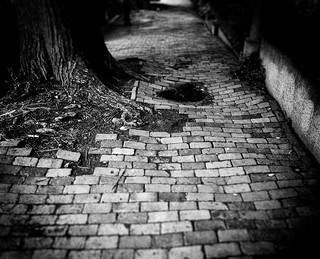 """...Streets are uneven when you're down..."" 