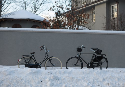 Winter Pashley and Gazelle | by Lovely Bicycle!