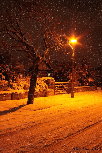 Snowy Night | by Meadow♥Girl