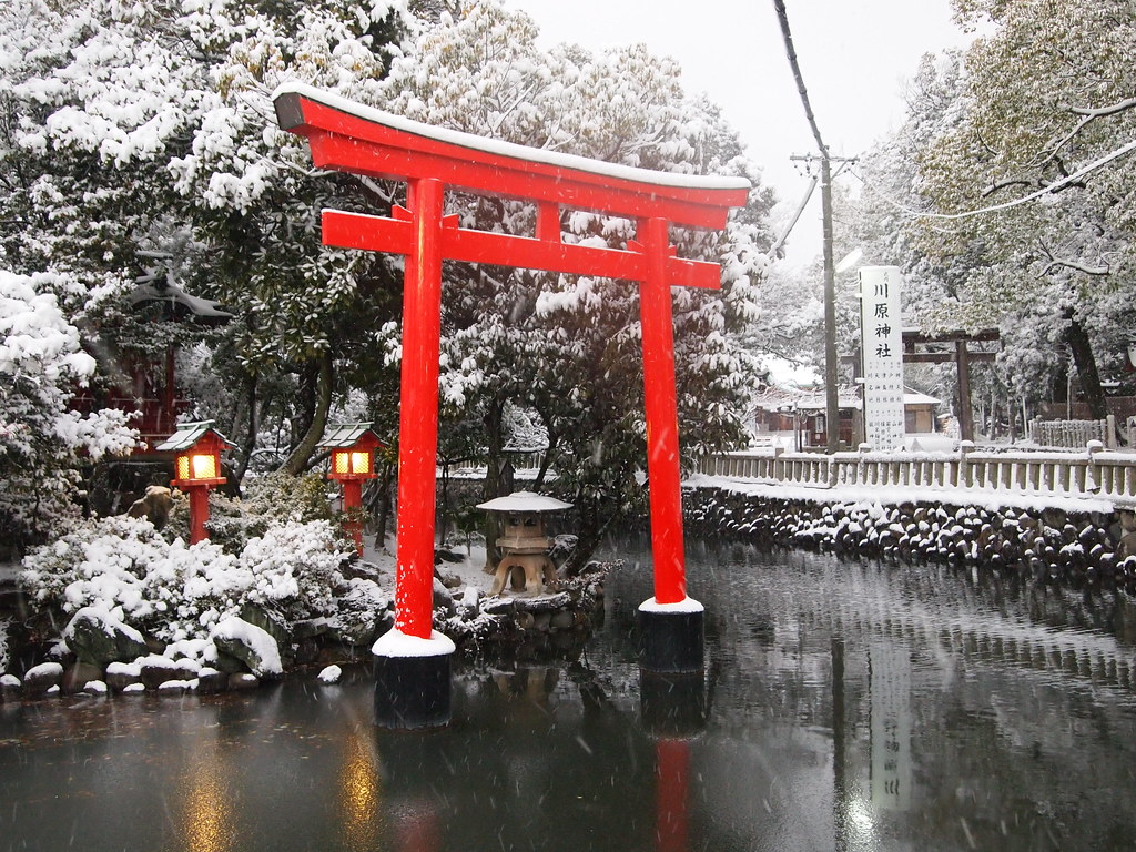 japan in winter i liked this view in a shinto temple coral