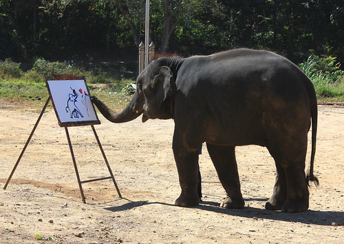 Auto-Portrait by Elephant! | by christine zenino