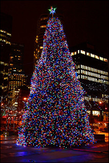 christmas tree at coal harbour | by aloalo*