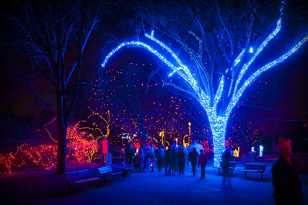 Denver Zoo Christmas Lights 2010 | Dave Ingraham | Flickr