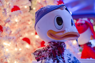 D23 Magic & Merriment Christmas 2010 | by TouringPlans.com