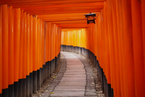 Torii Gates at Fushimi Inari Kyoto | by JapanVisitor